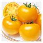 Echange plants tomates contre plants courgettes